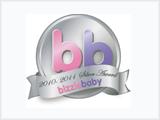 Mum_to_mum_Silver_BB_Award_2010-11_logo