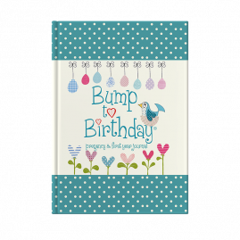 Bump to Birthday (Mummy & Mummy) pregnancy & first year journal by from you to me